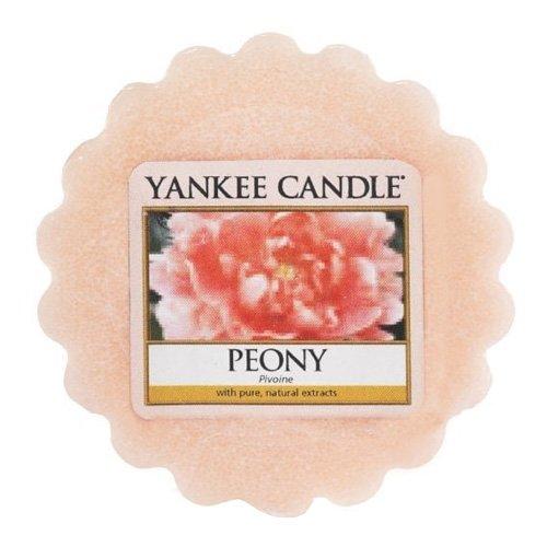 YANKEE CANDLE 1507696E 22 g Tartelette Parfumées en Cire Pivoine, Combinaison, Rose, 5,7x5,9x2 cm