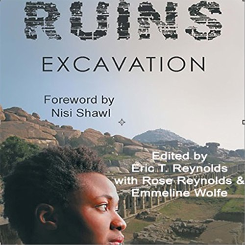 Ruins Excavation audiobook cover art