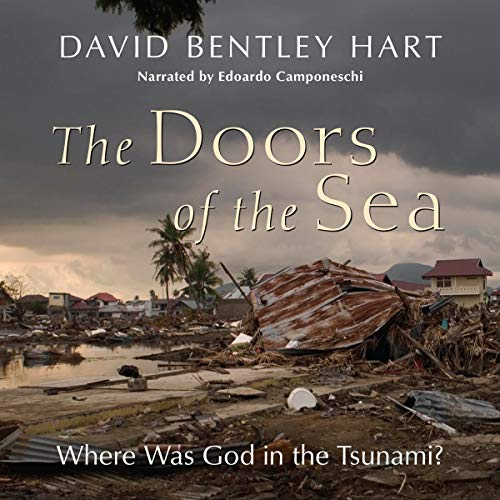The Doors of the Sea: Where Was God in the Tsunami? cover art