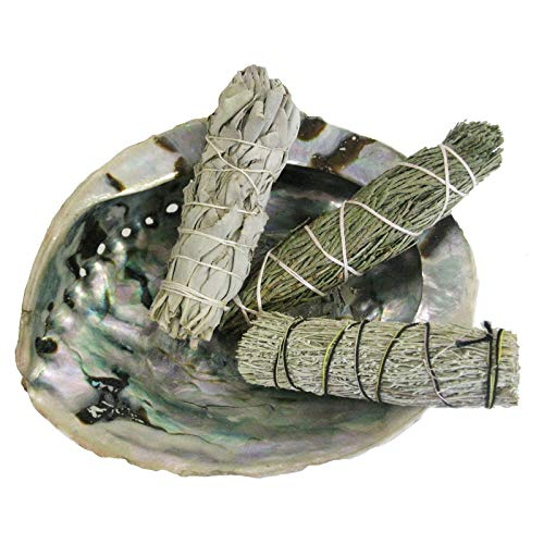 6-tlg Räucherset Abalone Räuchermuschel 13-16cm + 3 x Kräuter Bündel (Smudge Bundle) Salbei White Sage + Zeder + Beifuß + Booklet + Zubehör. 81094