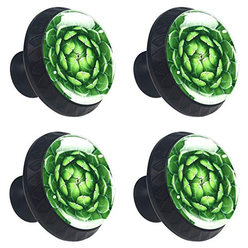 ATOMO 4 pomos de cristal de cactus verde de 30 mm para cajón, tirador Usd para armario, cajón