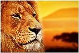 Wallario XXL Poster - Prächtiger Löwe in der Savanne in