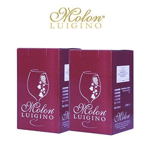 2 Bag in Box 5 l. Raboso Veneto Orientale - Molon