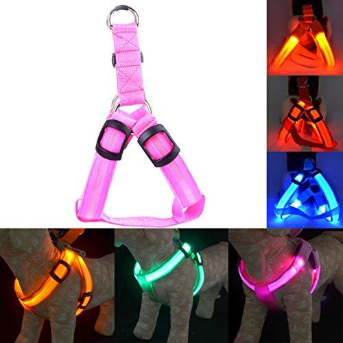 MYYXGS Collar De Perro Led, Correa De Nylon Recargable USB Collar De Seguridad para Mascotas Emisor De Luz Ajustable, Collar Reflector De Luz Reflectante para Perros