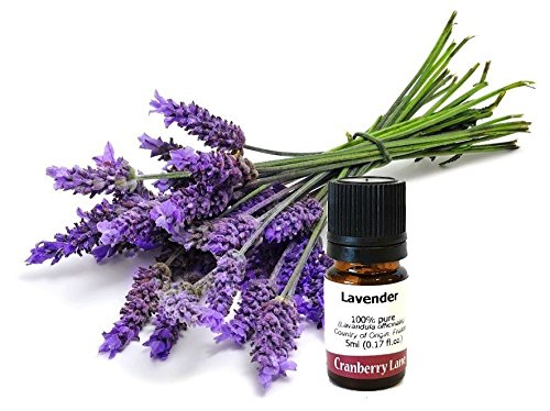 For Sale! Lavender French 100% Pure Essential Oil 100ml