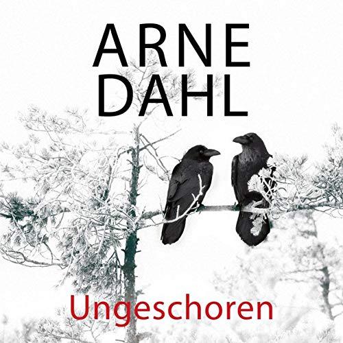 Ungeschoren  By  cover art