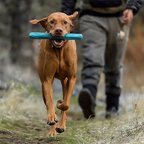 RUFFWEAR - Gnawt-a-Stick Durable Dog Toy, Metolius Blue