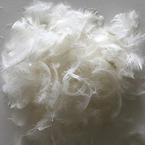 February Snow Bulk Goose Feather/Down Filling,100% Natural White Down-DIY,Make Your own Pillow,Comforter,Cushion,Toy,Jacket,Sofa-Sample,10% Goose Feather,10% Goose Feather,200G,1/2LB