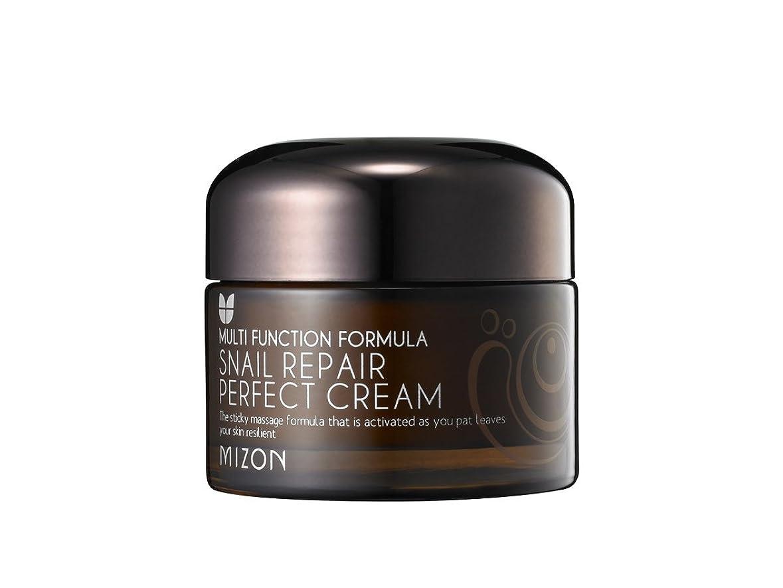 偽物ギター想像する[ミズオン] MIZON スネイルリペアパーフェクトクリーム(Snail repair perfect cream) [並行輸入品]