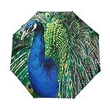 Paraguas de viaje compacto Peacock, para el aire libre, lluvia, sol, coche, plegable, resistente al viento, toldo reforzado, protección UV, mango ergonómico, apertura y cierre automático