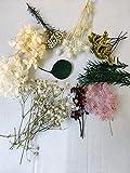 Zoom IMG-2 caliyo fiori secchi per resina