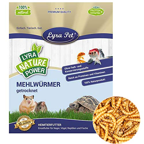 Lyra Pet® 10 kg Mehlwürmer 10000 g getrocknet Proteinfutter für Reptilien Nager