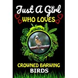 Just a Girl Who loves Crowned barwing Birds: Cute Line Composition Notebook Gift For Crowned barwing Birds Lover Girl, Women, Grandma And girls To Write In For Notes/Perfect For Animal Lover Valentine & Birthday Funny Gift Ideas