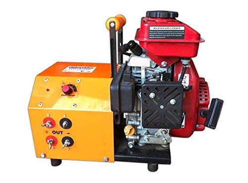Generador Speedy Gasolina para vareadores 12 V corriente tensión aceitunas recogida