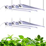 Barrina Plant Grow Light, 252W(6 x...