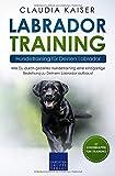 Labrador Training – Hundetraining für Deinen Labrador: Wie Du durch gezieltes Hundetraining eine einzigartige Beziehung zu Deinem Labrador aufbaust (Labrador Band, Band 2)