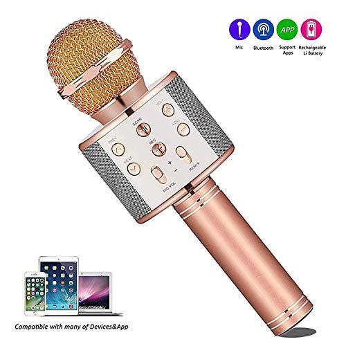 Micrófono Inalámbrico Karaoke Bluetooth, con 2 Altavoces Incorporados, Microfono Portátil para Cantar, Función de Eco, Compatible con Android/iOS, PC o Teléfono Inteligente