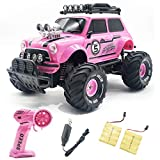 Remote Control Car for Girls, 2.4Ghz Pink RC Cars for Daughter with Two Rechargeable Batteries, Radio Controlled Vehicle for Toddlers Kids, Birthday R/C Toys for Granddaughter