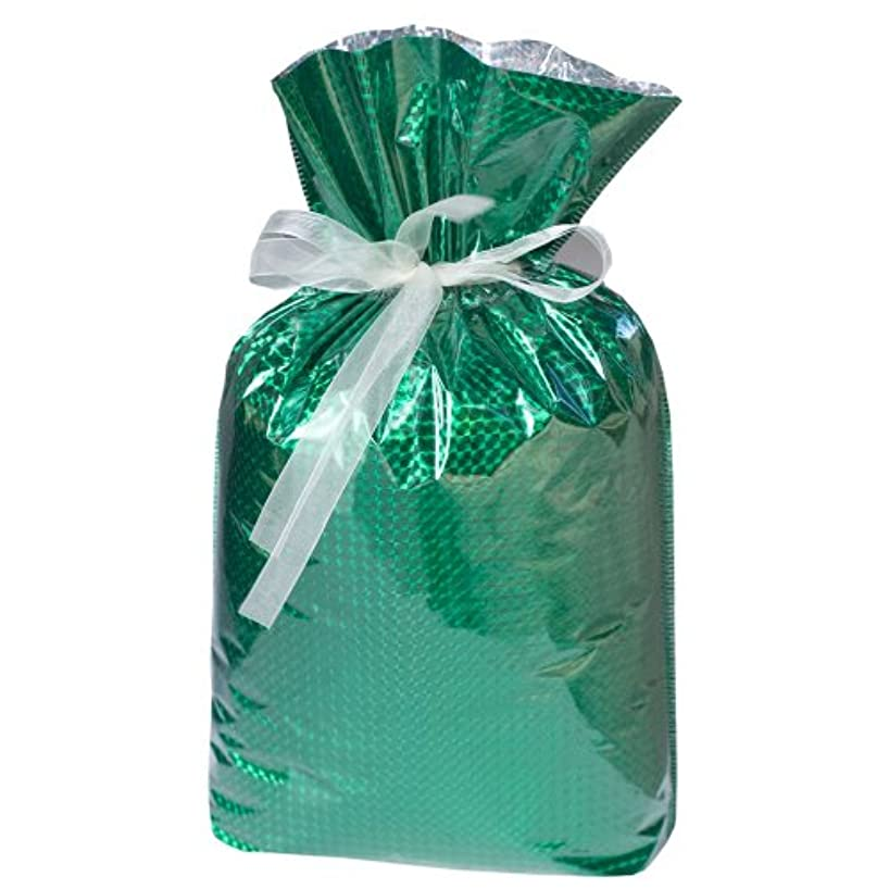 Gift Mate 21089-4 4-Piece Drawstring Gift Bags, Large, Diamond Green