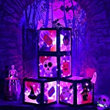 Hiboom 4 Pieces Halloween Black Balloon Box with Purple LED Light Strings, 40 Halloween Balloons, Scary Bats Ghost Pumpkin DIY Sign, Halloween Eve Party Photo Prop Decorations