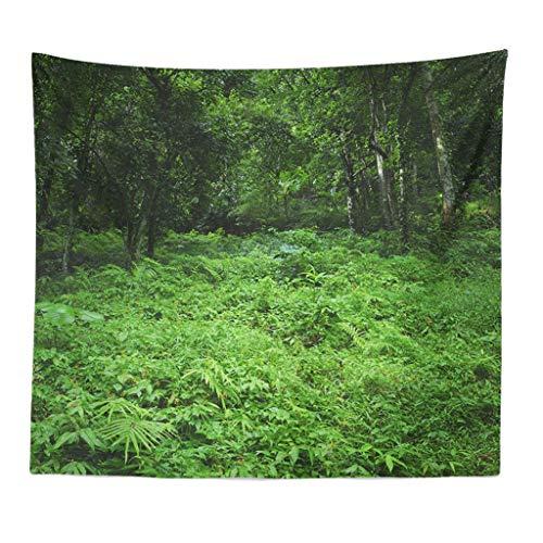Xmiral Tapisserie Natürlich Wald Landschaft Yogamatte Picknickdecke Wandteppich Wanddeko 150X200cm(O)