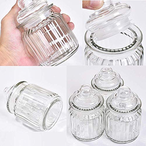 BS Packaging Glass Jar Pickle Jar Storage Container, with Air Tight Glass Lid Set of 3 Pcs .(350 ML Cap
