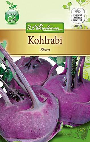 N.L. Chrestensen 4019 Kohlrabi Blaro (Kohlrabisamen)