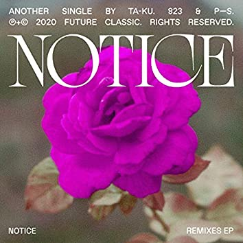 Notice (Remixes)