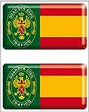 Artimagen Pegatina Oval Logo Legi/ón Color Resina 45x65 mm.