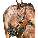 Cashel Company Grazing Muzzle Halter Black Horse