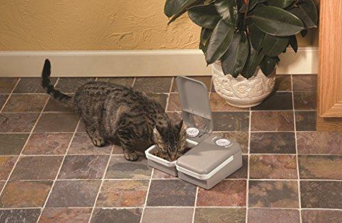PetSafe『おるすばんフィーダー2食分』