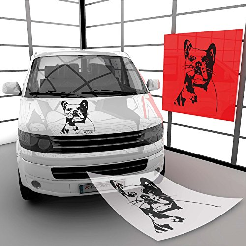 Klebe-X Französische Bulldogge Autoaufkleber Hundeaufkleber Hunde | A00624 23 - Hellbraun Glanz 59 cm (B) x 77 cm (H)