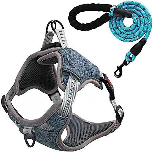 Small Dog Harness and Leash Set, No Pull Puppy Harness Breathable Dog Vest Small Medium Dogs
