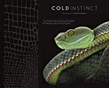 Matthijs Kuijpers - Cold instinct