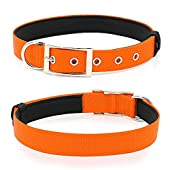 PZRLit Dog Collar for Small Medium Large Dogs, Soft Padded Dog Collars with Metal Buckle & D-Ring Heavy Duty Collar for Pet Dogs, Adjustable Nylon Thick Strong Puppy CollarOrange-Medium