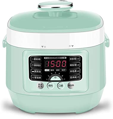 8-in-1 Electric Pressure Cooker,LED Display,24H Timing,Keep Warm Function,2.5L Capacity,Slow Cooker, Rice Cooker, Steamer, Saute,green
