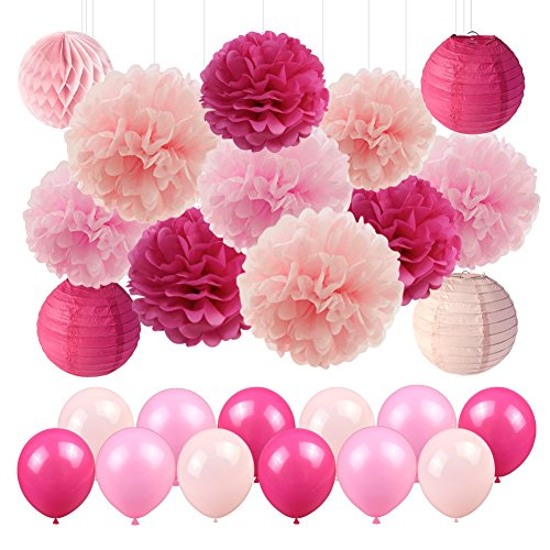 Pink Party Decorations Paper Lanterns Paper Honeycomb Balls Tissue Paper Pom Poms for Girls Birthday Wedding Party
