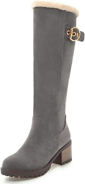 Webb Perkin Women Fashion Warm Short Plush shoes Zipper Casual Female High Heel Boot Lady Knee High Boots
