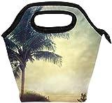 Bolsa de almuerzo con cremallera aislada con hoja de palma, bolsa de asas más fresca para adultos,...