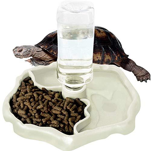 WINGOFFLY Automatischer Reptilien-Futterspender Wasserspender für Schildkröten, Wasserspender für Schildkröten, Futter-Wassernapf für Eidechsen, leuchtend