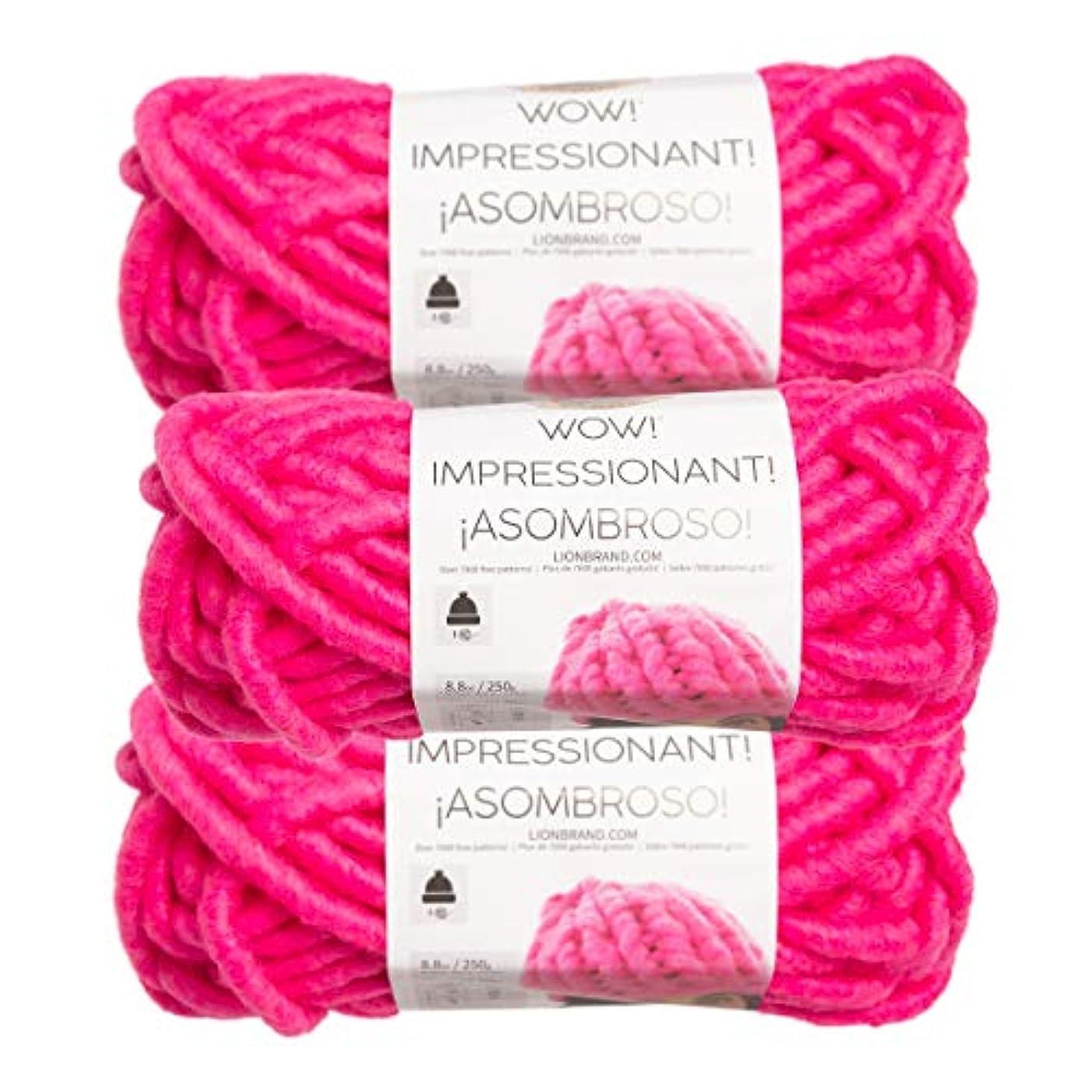 Lion Brand (3 Pack) Wow! Acrylic & Wool Soft Bright Fuchsia Pink Yarn for Knitting Crocheting Jumbo #7