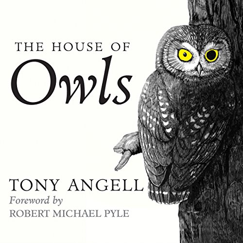 The House of Owls cover art