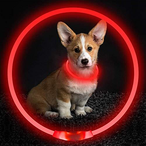 Jxunter Collar LED para perro, recargable por USB, brillante collar de perro para seguridad nocturna, collar con luz para perros pequeños, medianos y grandes.
