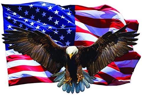 Soaring Bald Eagle American Flag Decal from The United States 12 x 8 product image