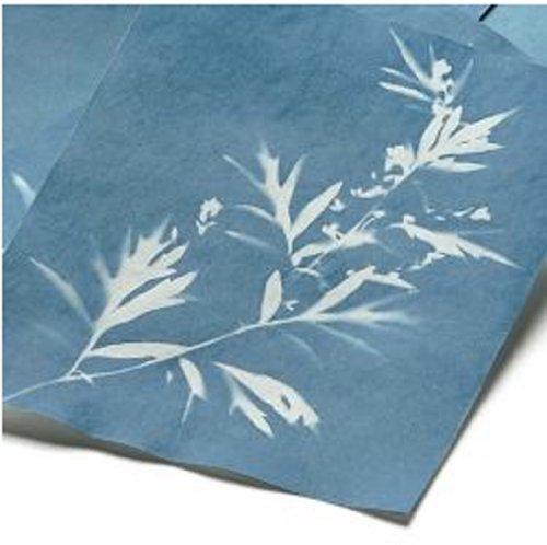 Frühes Forschen Solar-Fotopapier 10 Blatt