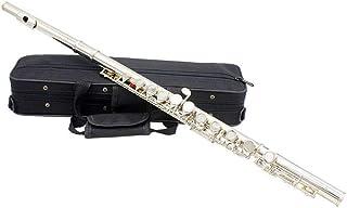 LVSSY-Premium Grade Silver Closed Hole C Flauta Instrumento Musical Y Estuche de Transporte Adecuado para Principiantes Principiantes Avanzados Tocando