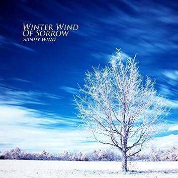 슬픔의 겨울바람