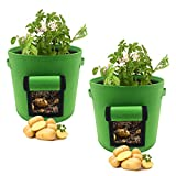 FIXKIT Pflanzsack aus Vliesstoff, 2 Stück, mit Fenster/Klettverschluss/Tragegriffen, Vliesstoff Pflanzsack Geeignet für Kartoffeln, Tomaten, Erdbeeren, Blume usw (30L)
