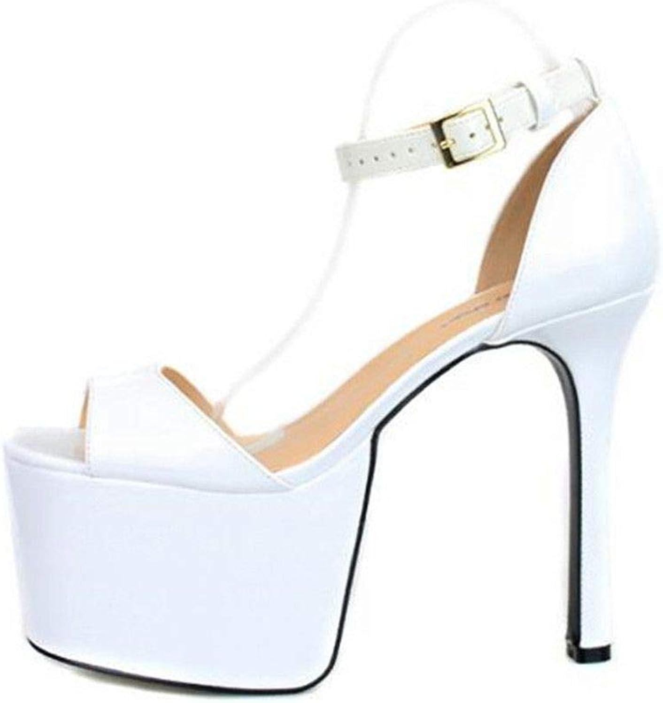 Cathy Lin Crossdresser Buckle Sandals Summer 16cm Thin High Heels shoes Woman Open Toe Pumps