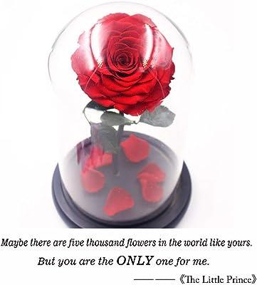 Formemory - Orsacchiotto di rose artificiale, ideale per San Valentino, con fiori artificiali, regalo creativo per anniversario, matrimonio, compleanno, colore rosso Stile 2